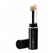 Vichy Dermablend cosmetica correctora (14 h 25 nude)