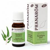 Pranarom eucalyptus azul aceite esencial 10 ml