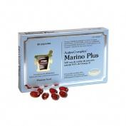 Activecomplex marino plus (60 capsulas)