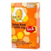 Jalea real fresca 1000 Arkoreal (20 ampollas bebibles)